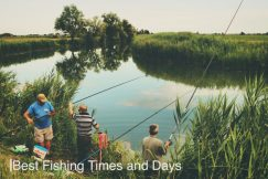 Best Fishing Times and Days